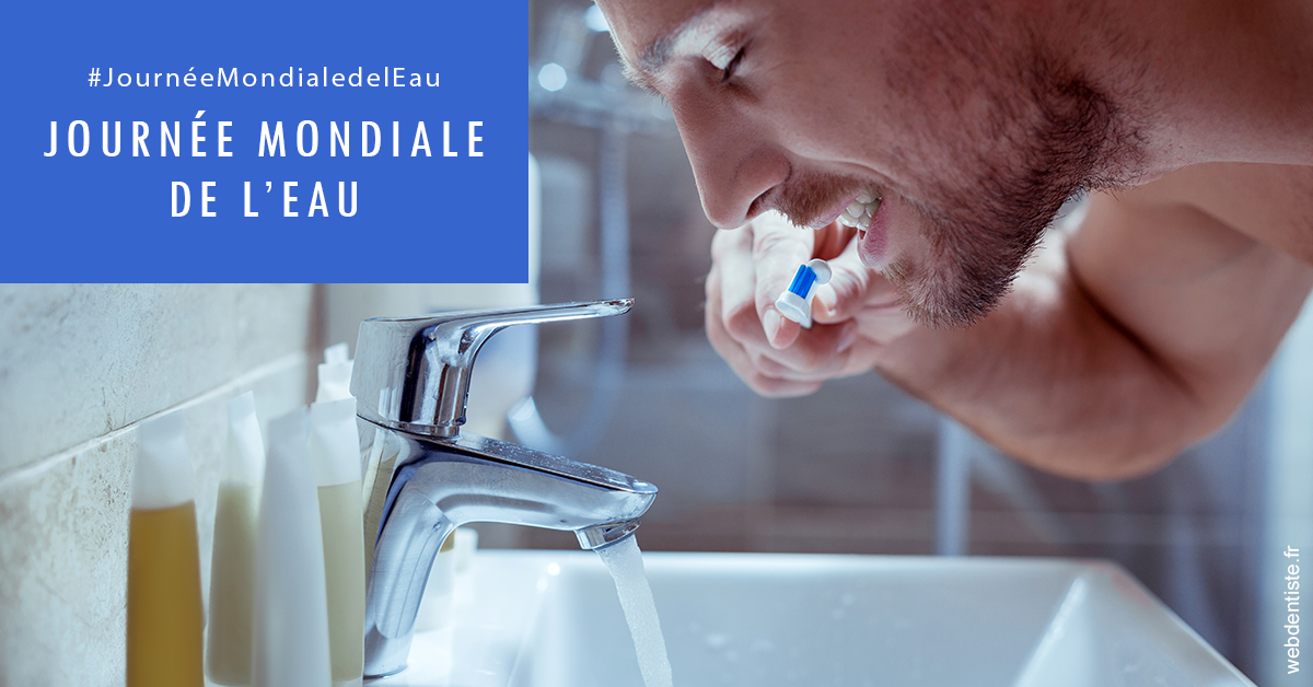 https://dr-acquaviva-cyril.chirurgiens-dentistes.fr/Journée de l'eau 2