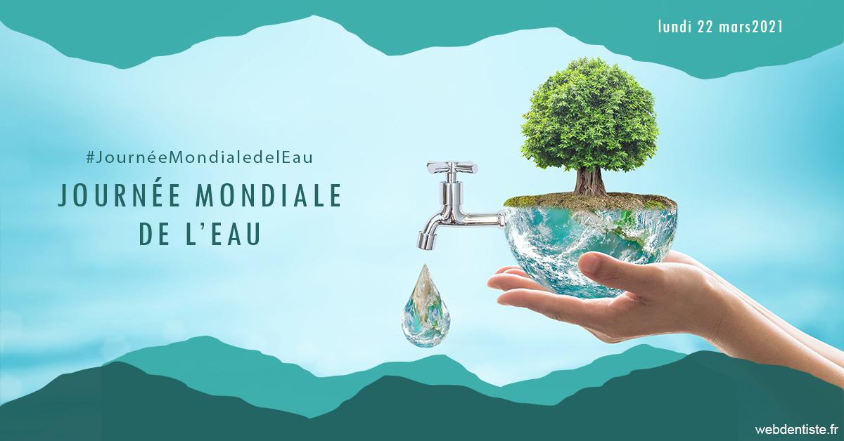 https://dr-acquaviva-cyril.chirurgiens-dentistes.fr/Journée de l'eau 1
